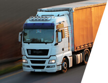 World wide logistics partners for Domestic Transportation